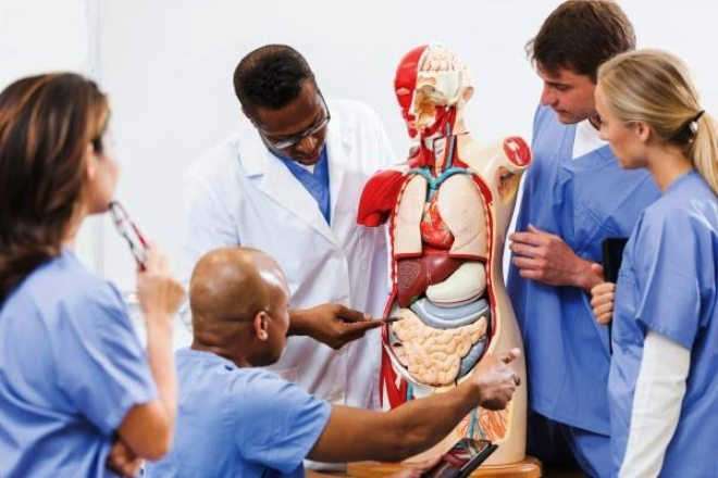 USA Medical schools